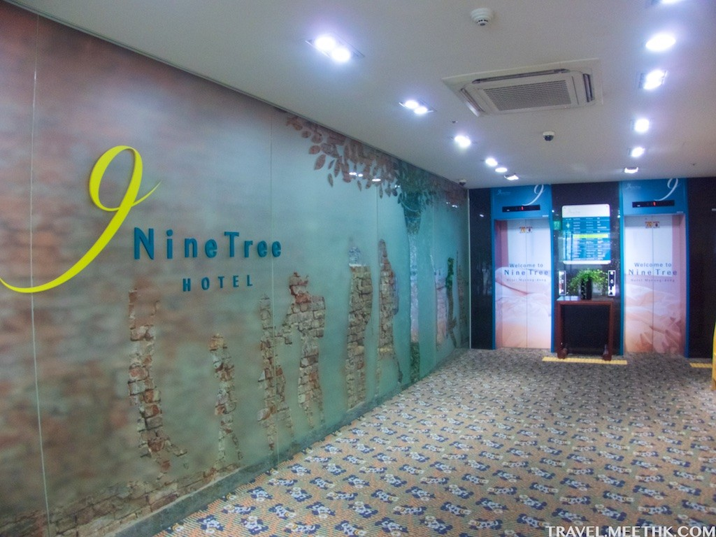 nine tree CIMG2920